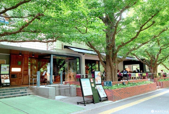 草莓拿破崙派代表!日劇中常出現的「キハチ 青山本店」